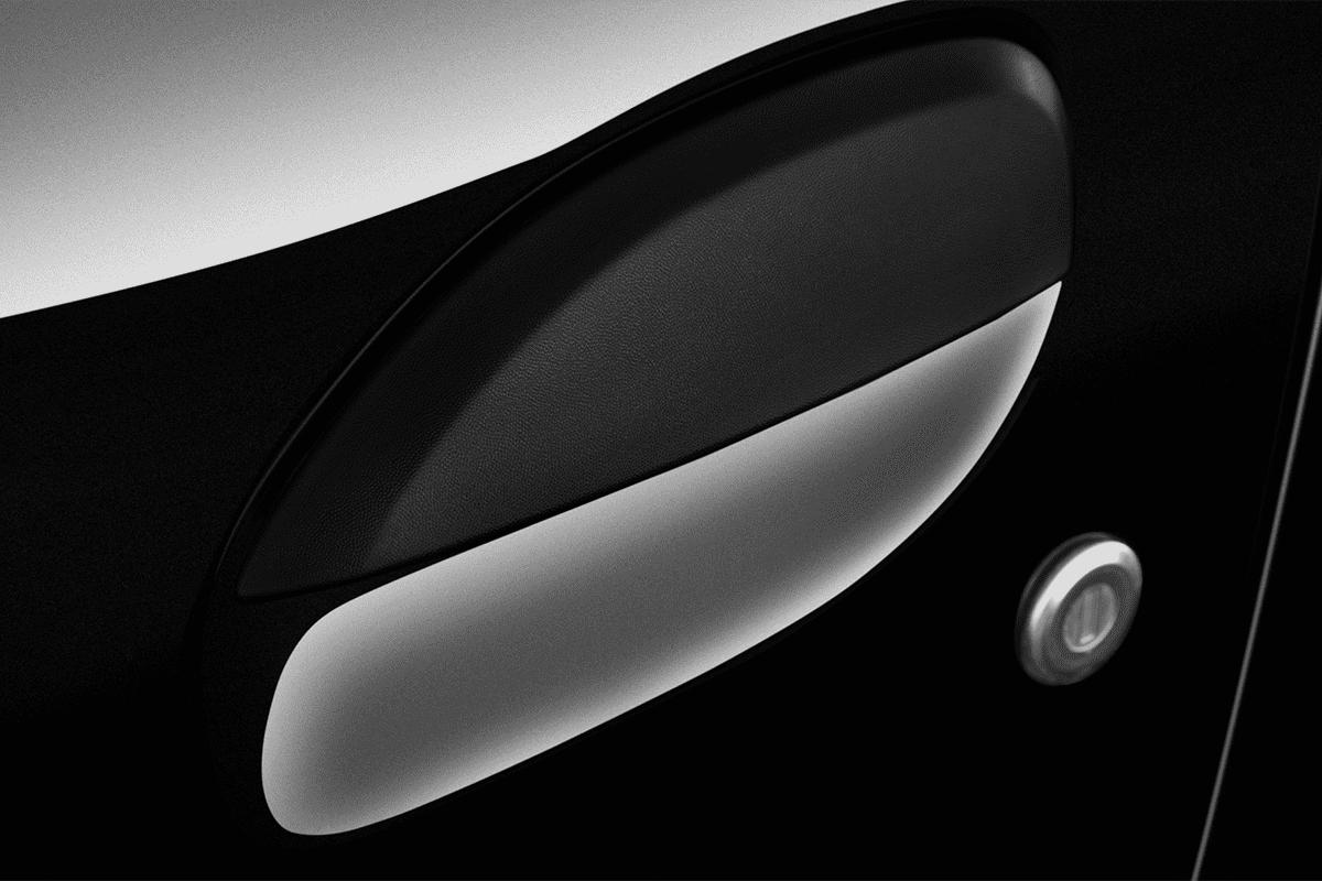 Dacia Sandero Stepway doorhandle