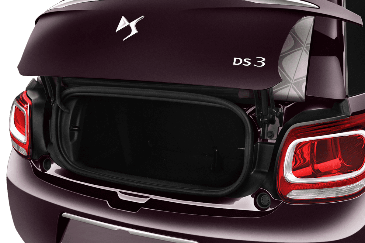 DS  trunk