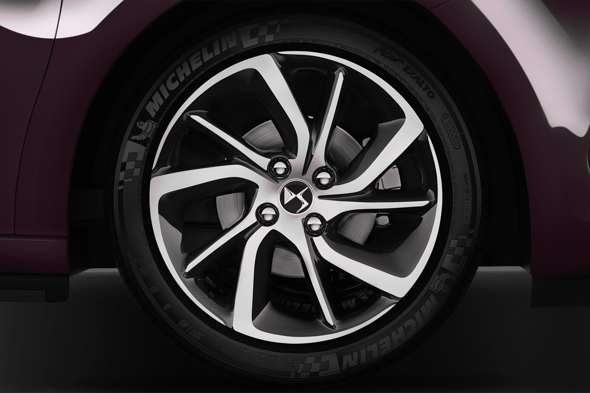 DS  wheelcap