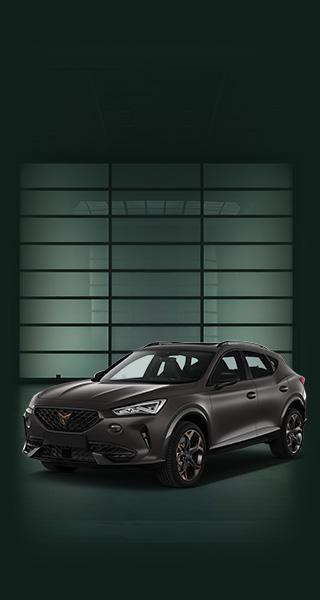 Cupra Formentor, 2.0 TSI VZ 4Drive DSG, 310 PS, Automatik, Benzin